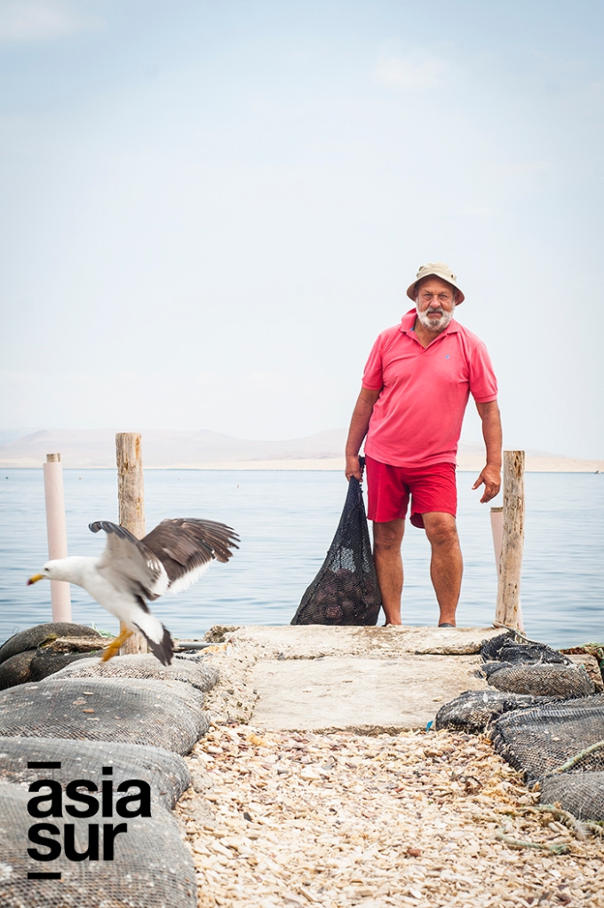 «Esta es una manera de hacer que Paracas vuelva a ser lo que siempre ha sido: una zona llena de vida natural». (Foto: Oliver Lecca / Asia Sur)
